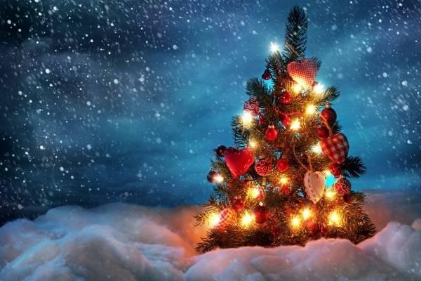 Sử dụng đồ trang trí thông Noel có kích thước lớn.